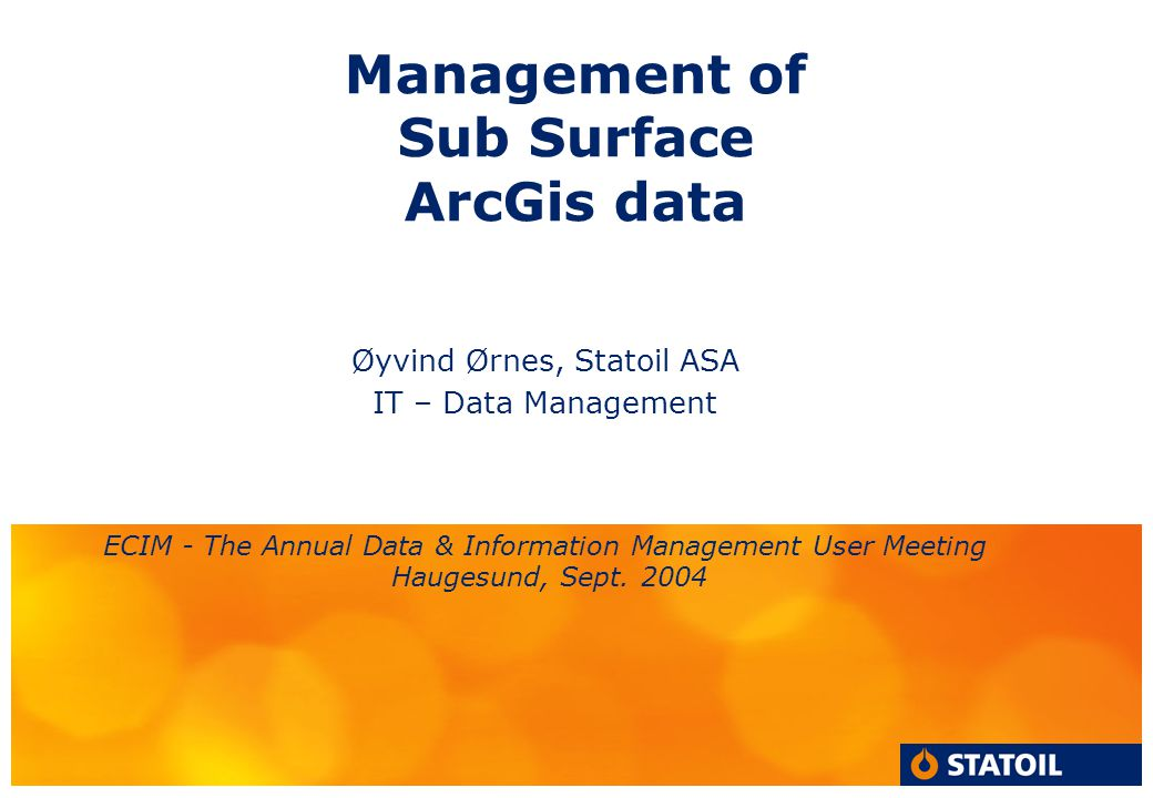Management of Sub Surface ArcGis data