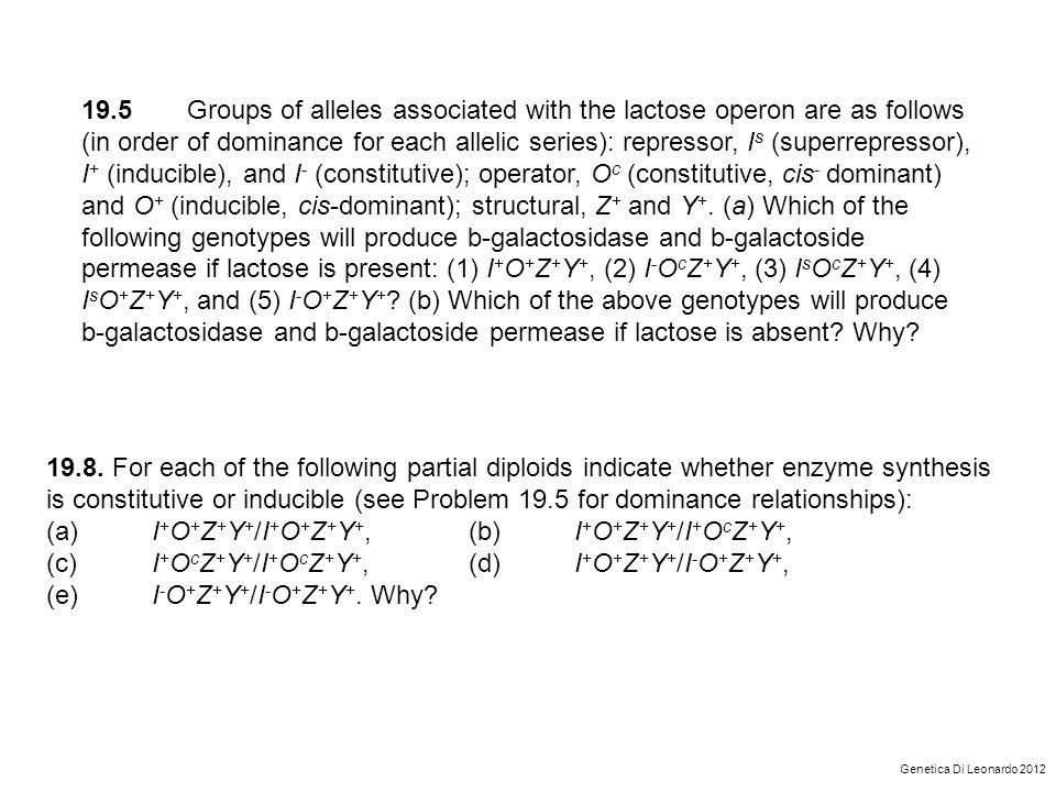 (a) I+O+Z+Y+/I+O+Z+Y+, (b) I+O+Z+Y+/I+OcZ+Y+,