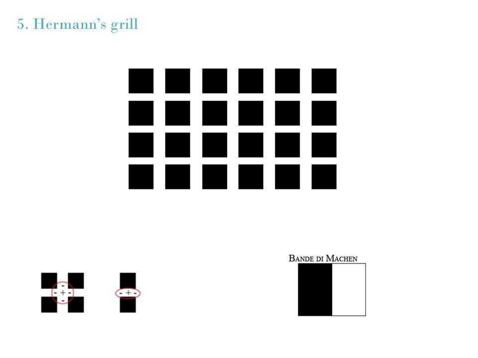 5. Hermann's grill
