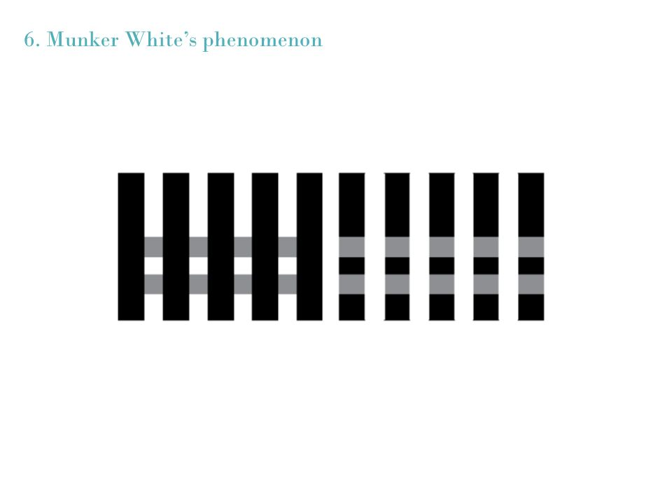 6. Munker White's phenomenon