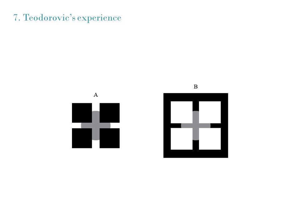 7. Teodorovic's experience