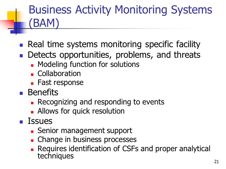 Business Activity Monitoring Systems (BAM)