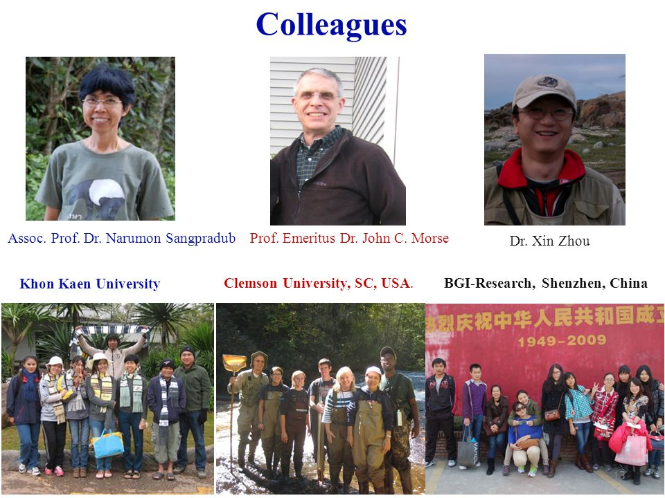 Colleagues Assoc. Prof. Dr. Narumon Sangpradub