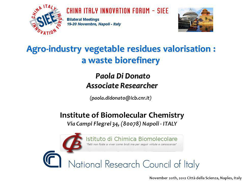 Agro-industry vegetable residues valorisation : a waste biorefinery