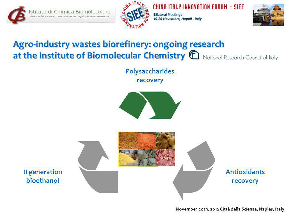 Agro-industry wastes biorefinery: ongoing research