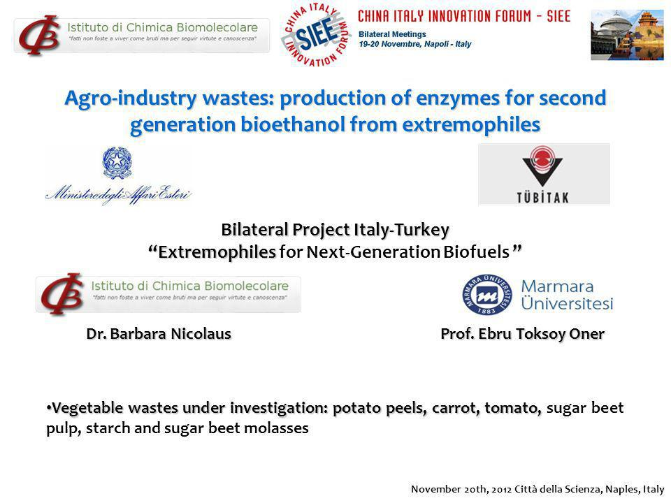 Agro-industry wastes: production of enzymes for second generation bioethanol from extremophiles