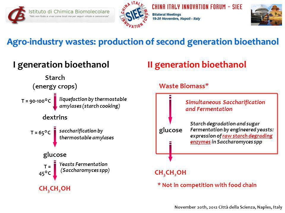 Agro-industry wastes: production of second generation bioethanol