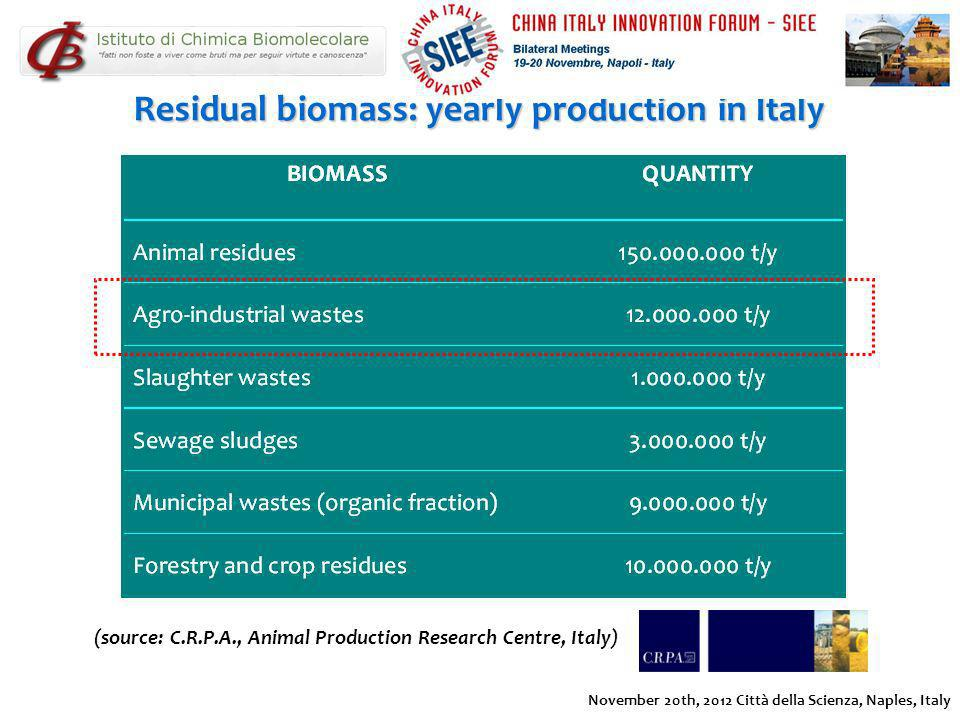 Residual biomass: yearly production in Italy