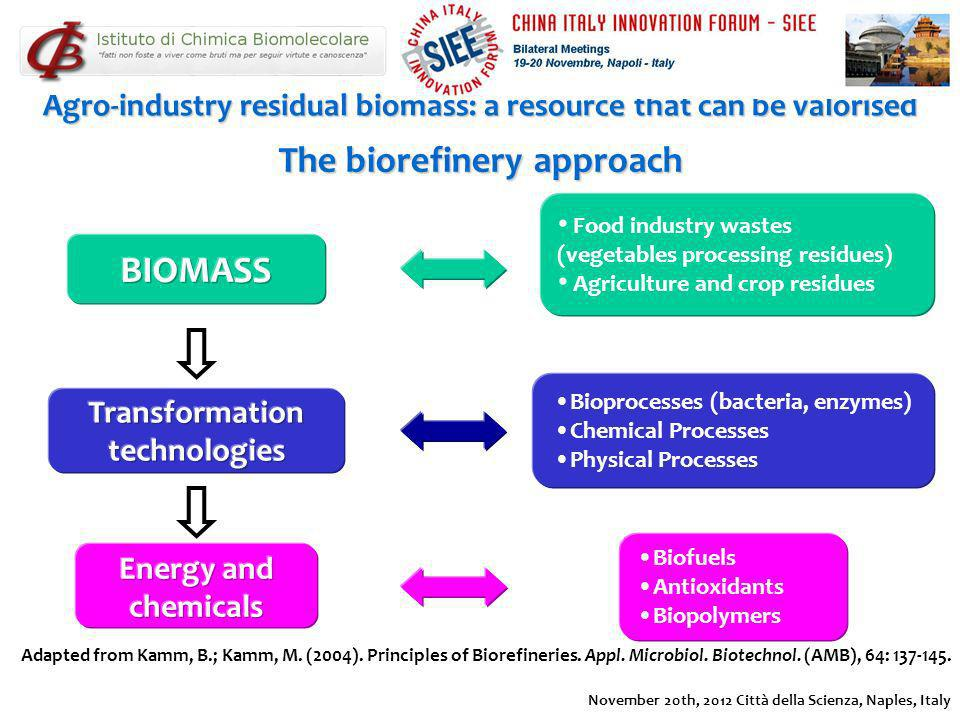 The biorefinery approach BIOMASS