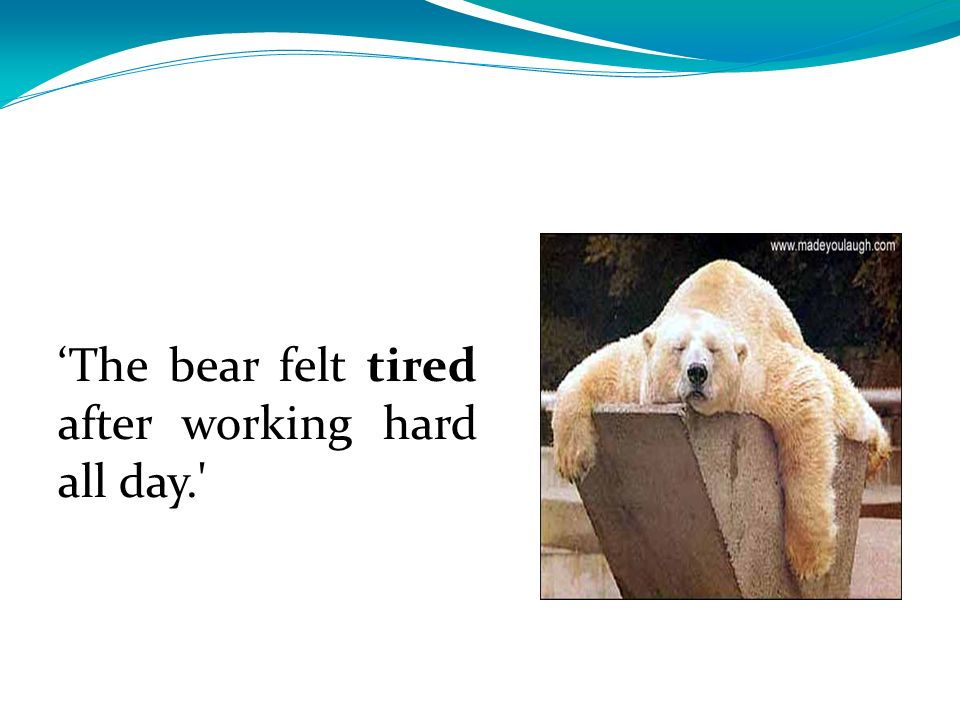 'The bear felt tired after working hard all day.