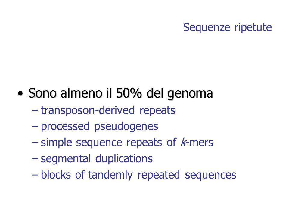 Sono almeno il 50% del genoma