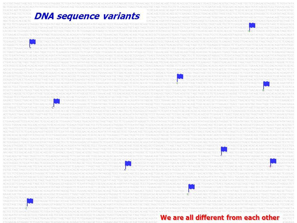 DNA sequence variants We are all different from each other