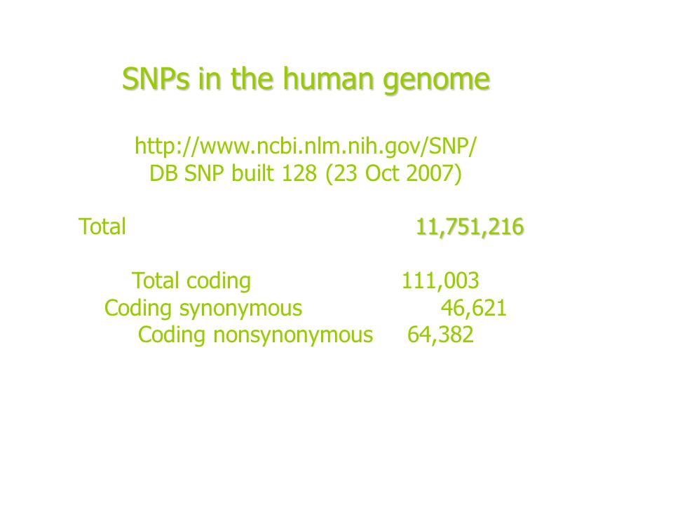 SNPs in the human genome