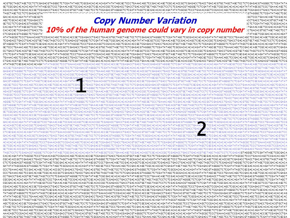 10% of the human genome could vary in copy number