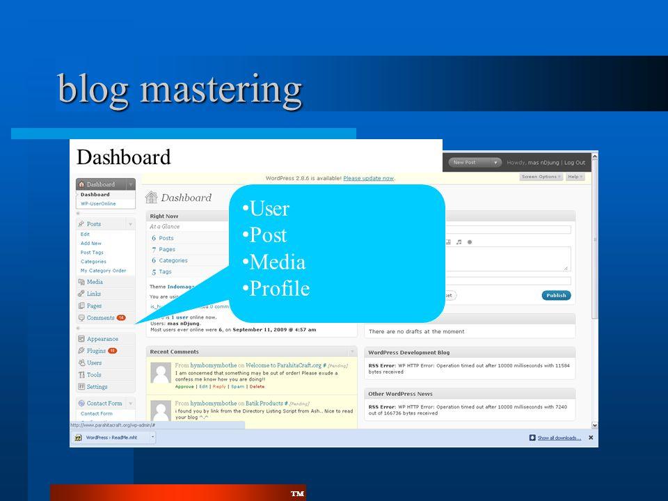 blog mastering Dashboard User Post Media Profile