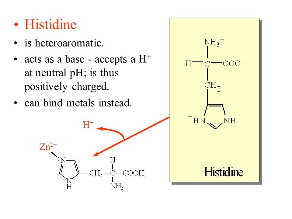 Histidine is heteroaromatic.