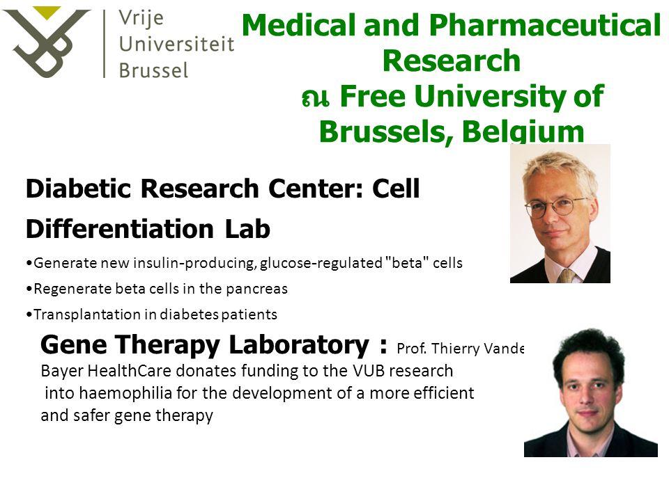ป.โท สาขา Medical and Pharmaceutical Research ณ Free University of Brussels, Belgium