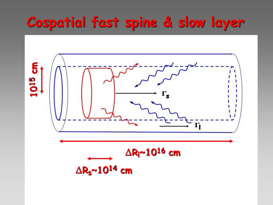 Cospatial fast spine & slow layer