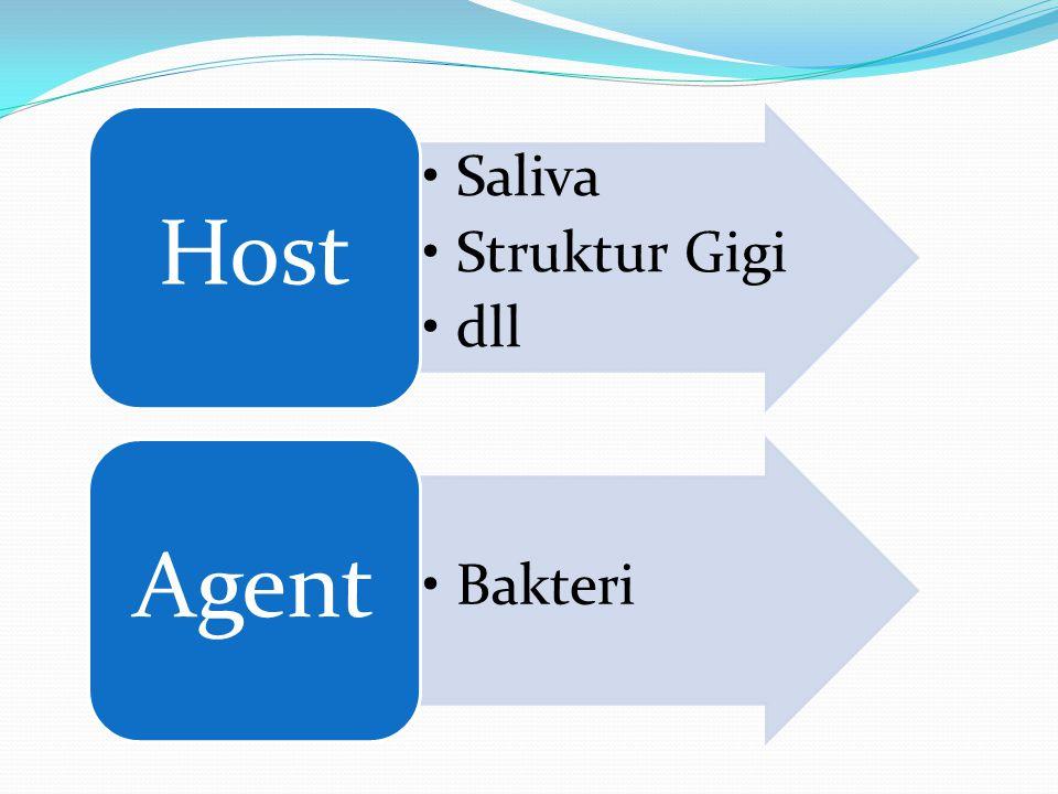 Host Saliva Struktur Gigi dll Agent Bakteri
