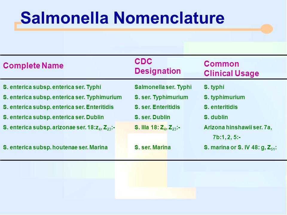 Salmonella Nomenclature