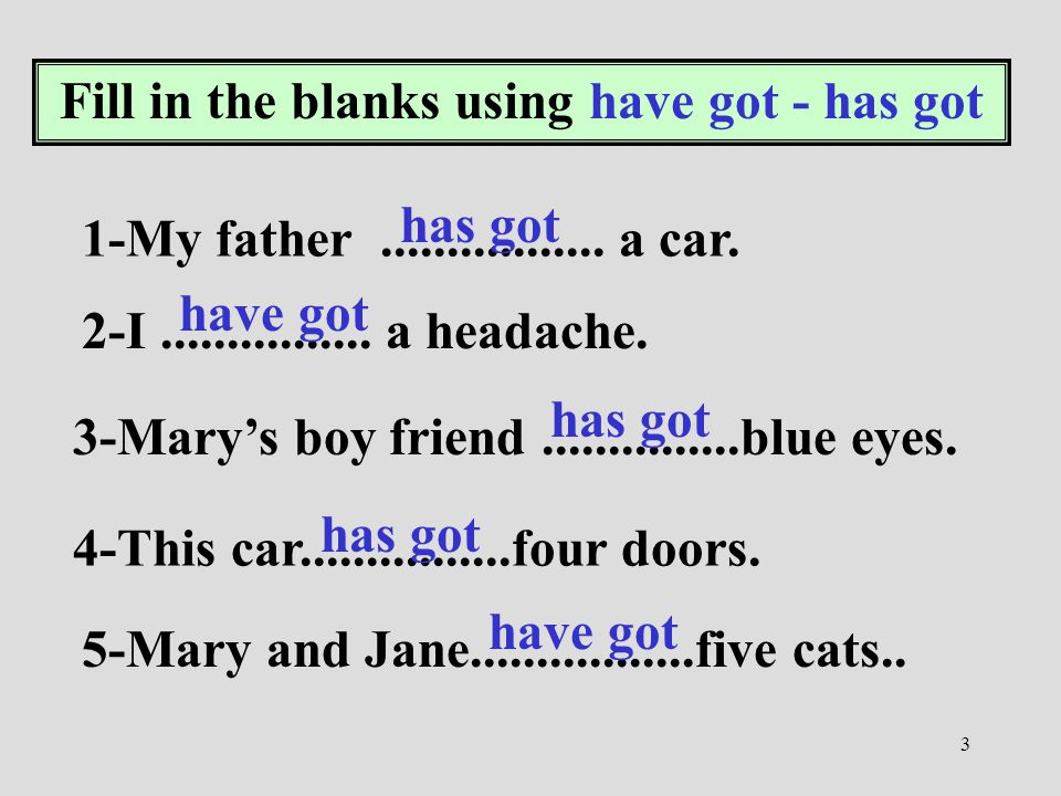 Fill in the blanks using have got - has got
