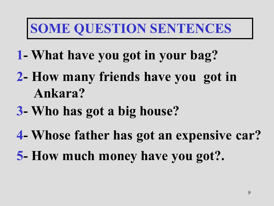 SOME QUESTION SENTENCES