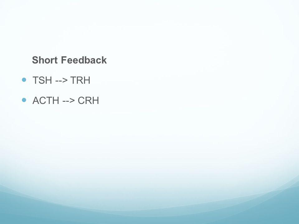 Short Feedback TSH --> TRH ACTH --> CRH