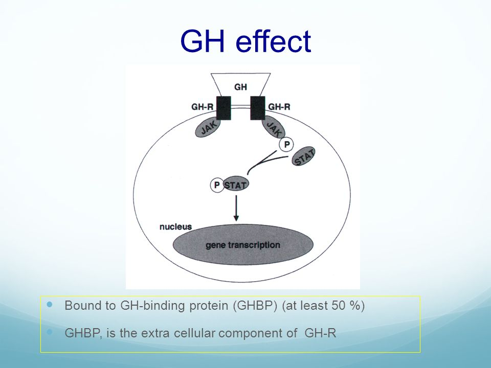 GH effect Bound to GH-binding protein (GHBP) (at least 50 %)