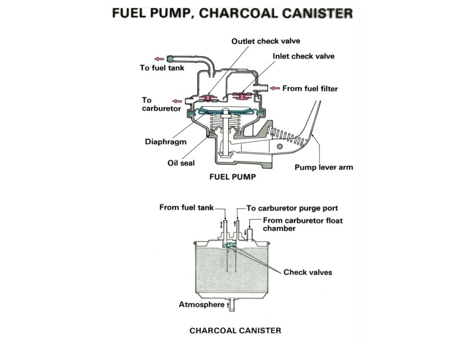 Fuel Pump, Charcoal Canister