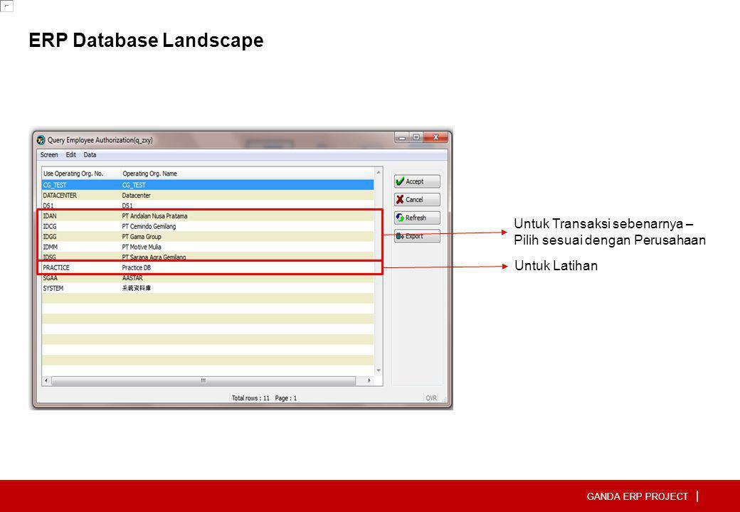 ERP Database Landscape