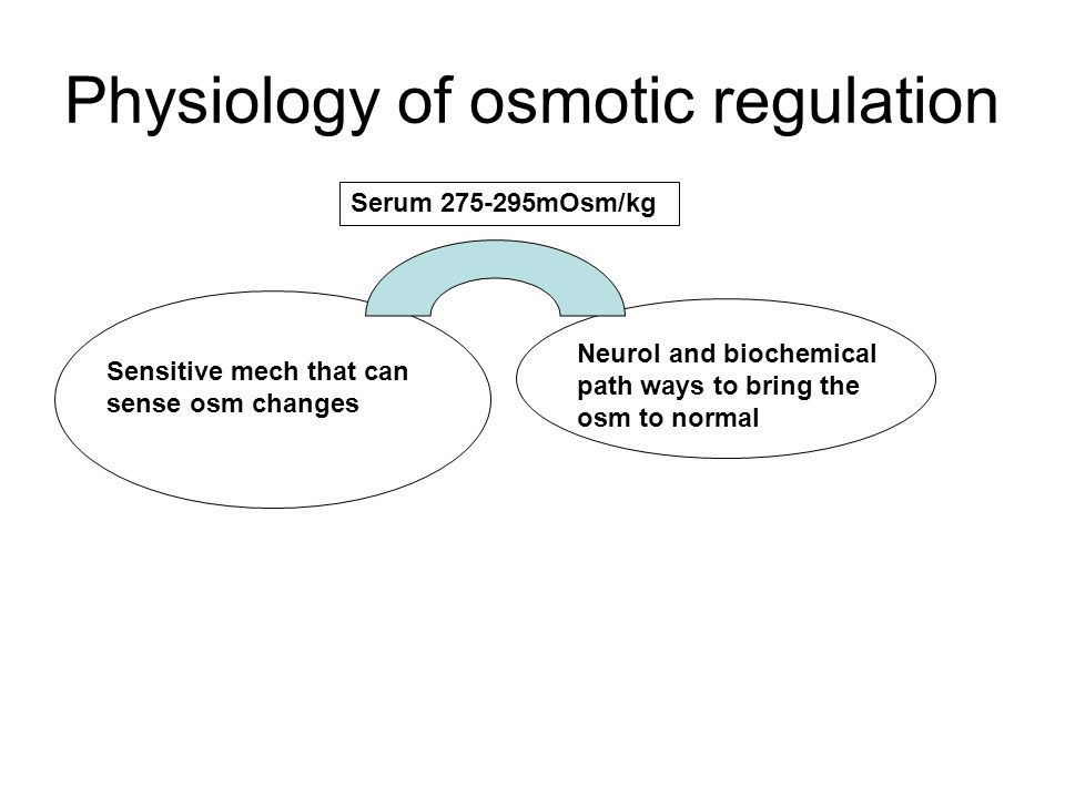 Physiology of osmotic regulation