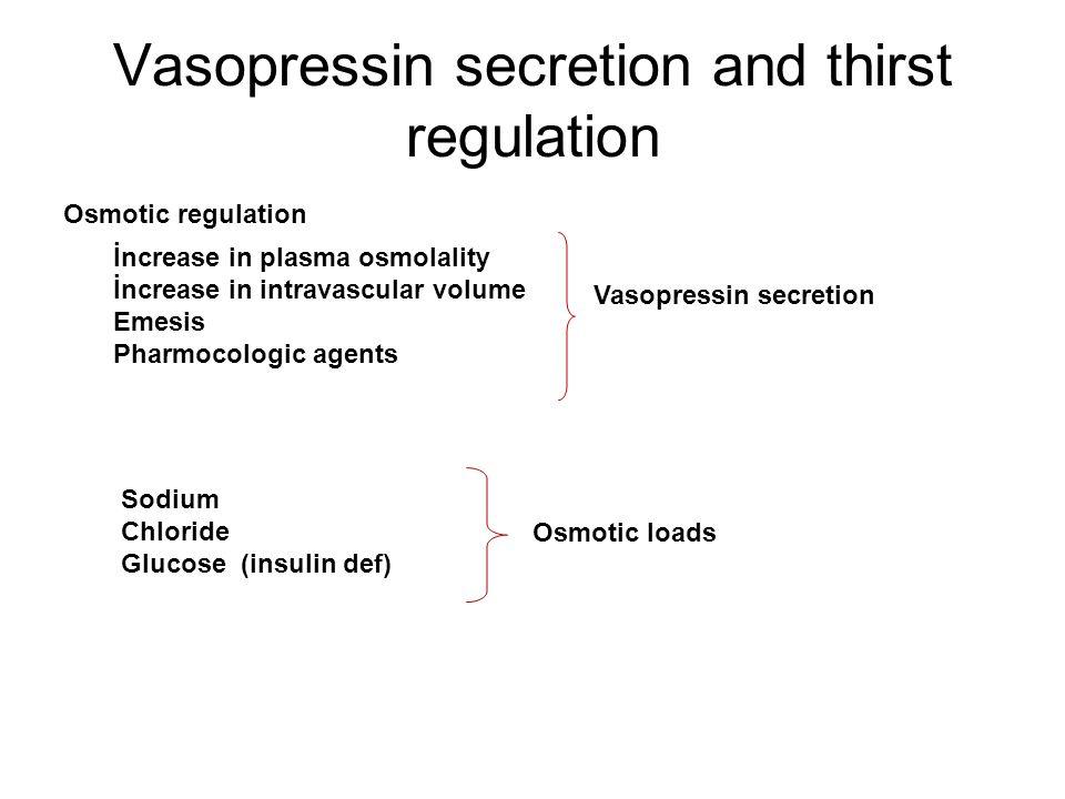 Vasopressin secretion and thirst regulation