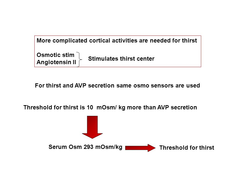 More complicated cortical activities are needed for thirst