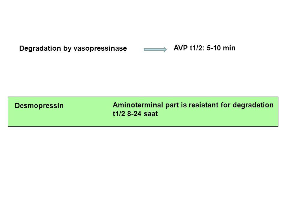 Degradation by vasopressinase