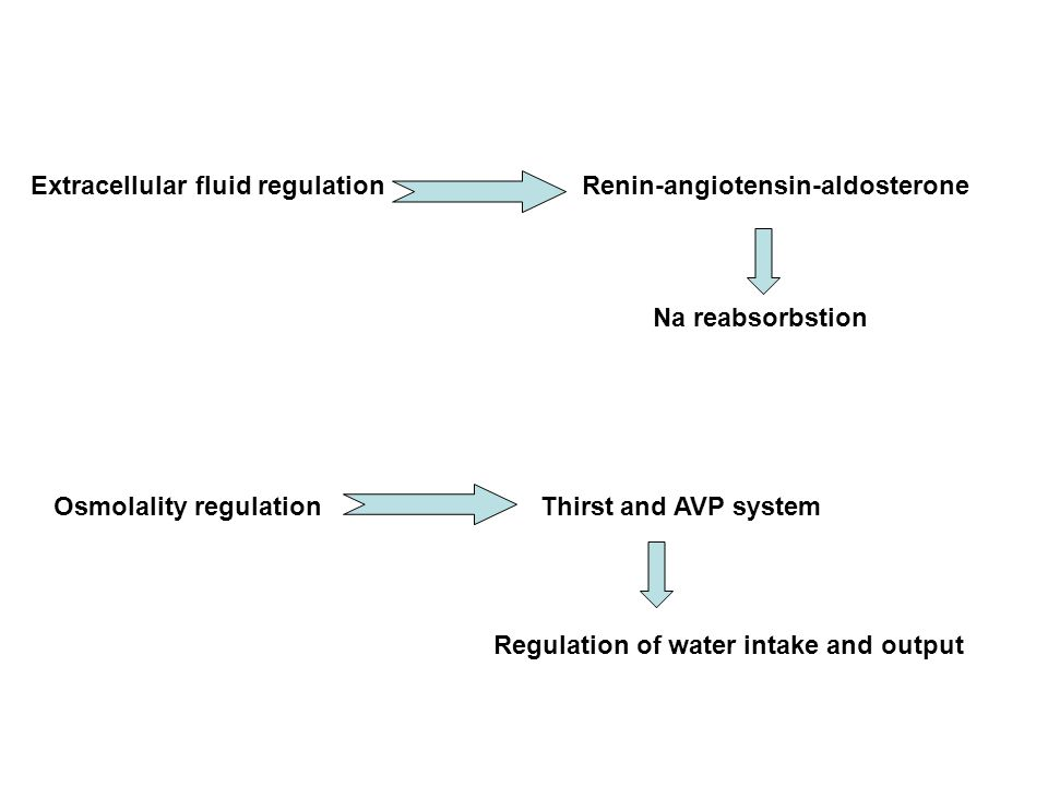 Extracellular fluid regulation