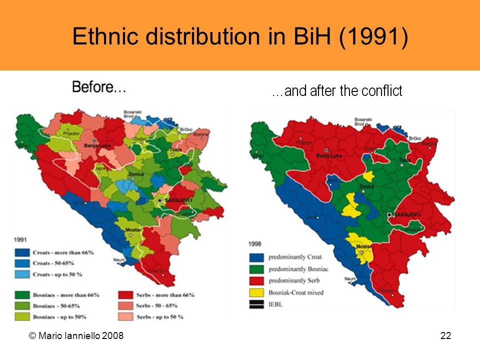 Ethnic distribution in BiH (1991)