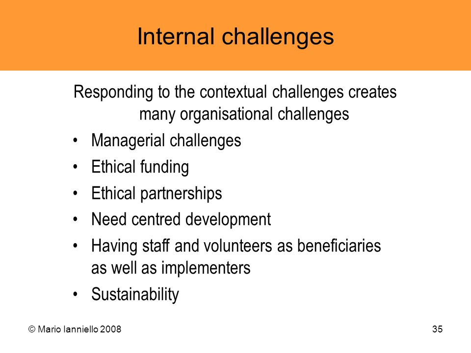 Internal challenges Responding to the contextual challenges creates many organisational challenges.