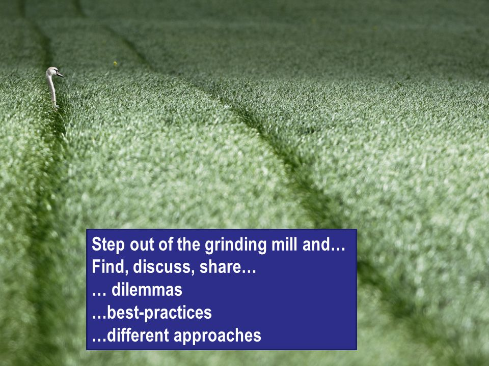 Step out of the grinding mill and…