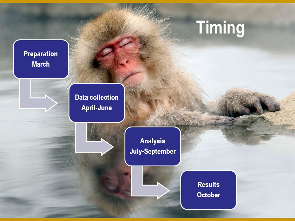 Timing Preparation March Data collection April-June Analysis