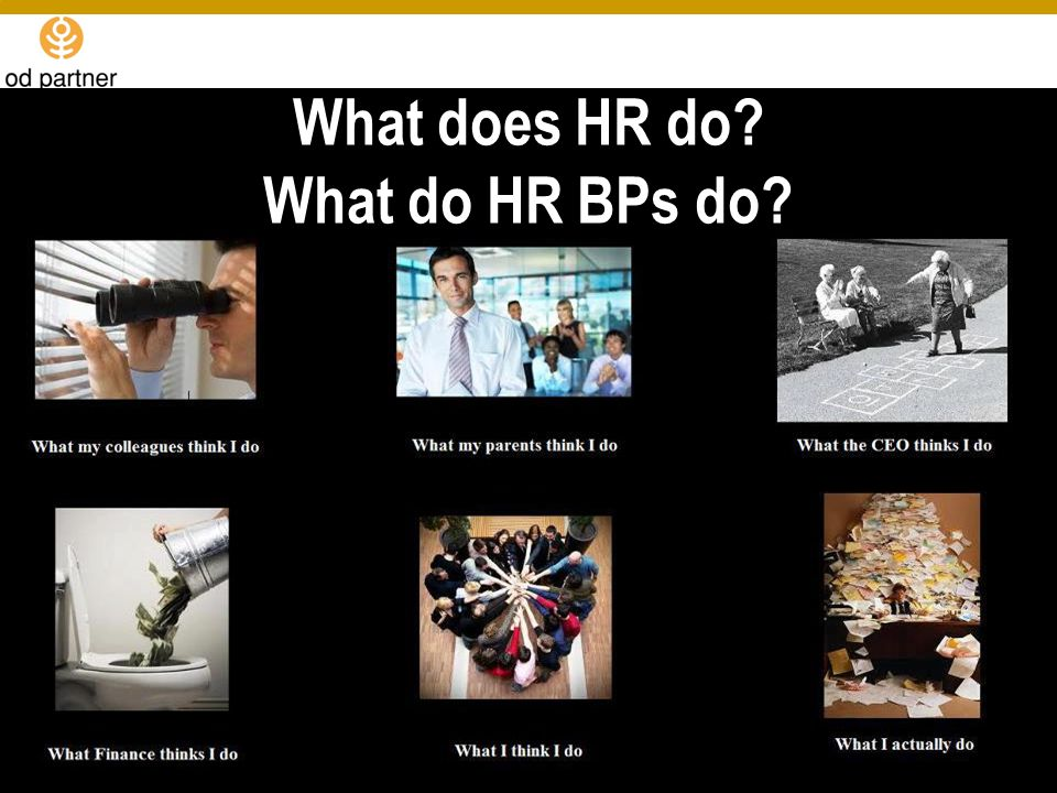 What does HR do What do HR BPs do