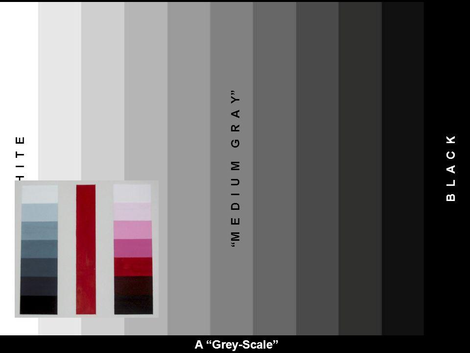 M E D I U M G R A Y W H I T E B L A C K A Grey-Scale