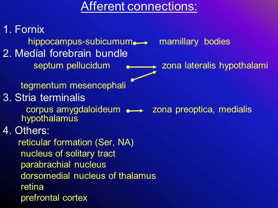 Afferent connections: