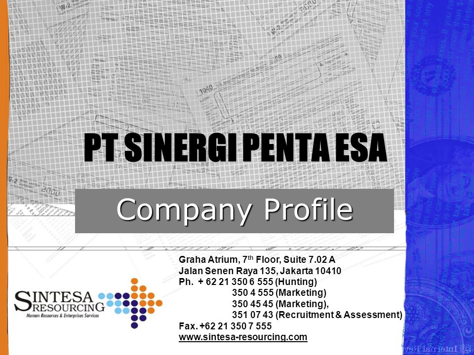 PT SINERGI PENTA ESA Company Profile