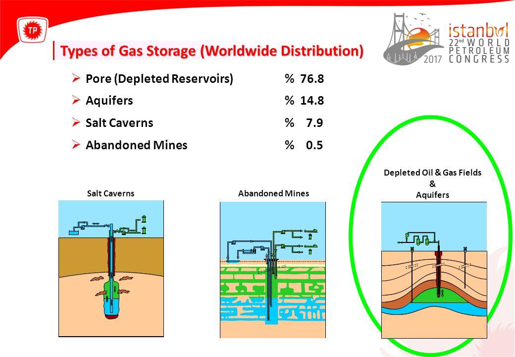 Depleted Oil & Gas Fields