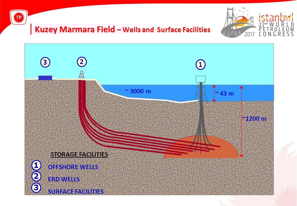 Kuzey Marmara Field – Wells and Surface Facilities