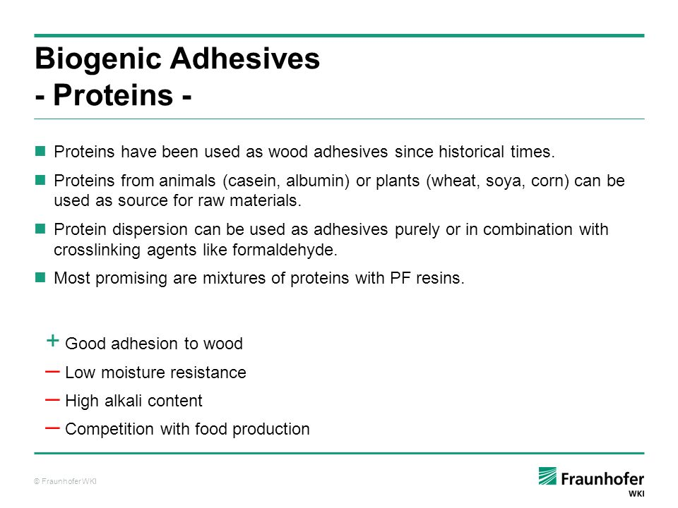 Biogenic Adhesives - Proteins -