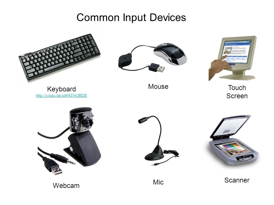 Common Input Devices Mouse Touch Screen Keyboard Scanner Mic Webcam
