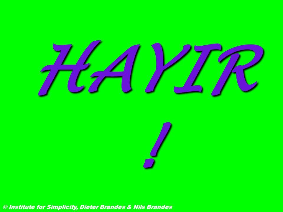 HAYIR! © Institute for Simplicity, Dieter Brandes & Nils Brandes