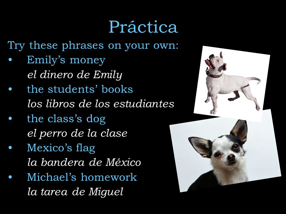 Práctica Try these phrases on your own: Emily's money