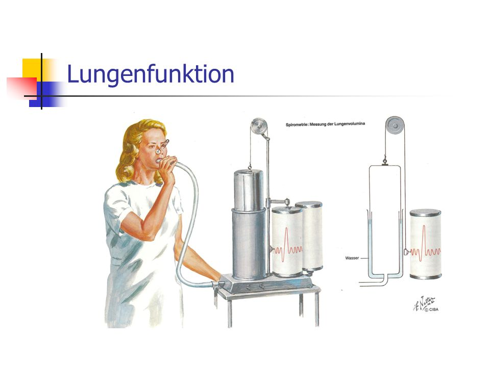 Lungenfunktion